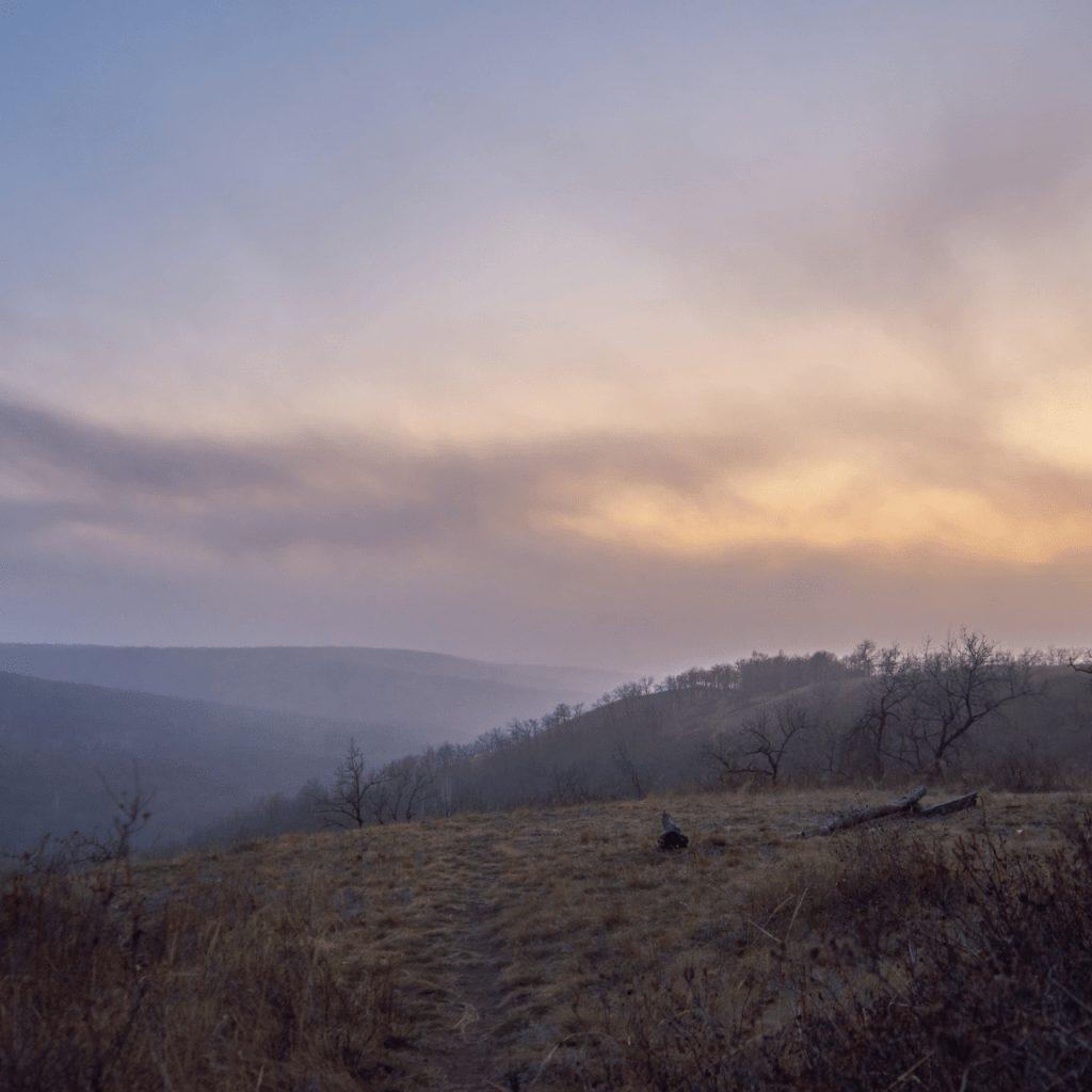 Мглистыми тропами Кумысной поляны