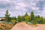 Лесхоз Кумысной поляны Саратов