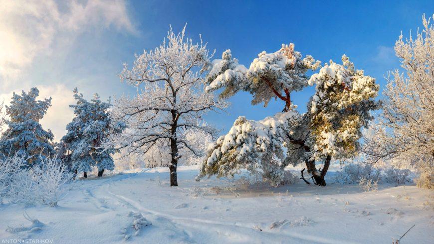 Зимний пейзаж Кумысной поляны
