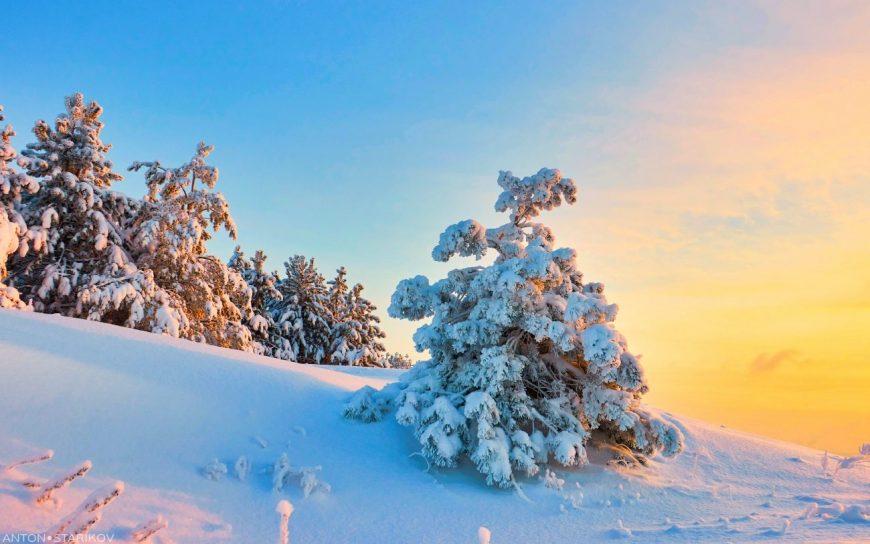 Снежные фото Кумысной поляны