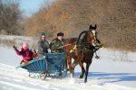 Конные прогулки в Саратовской области