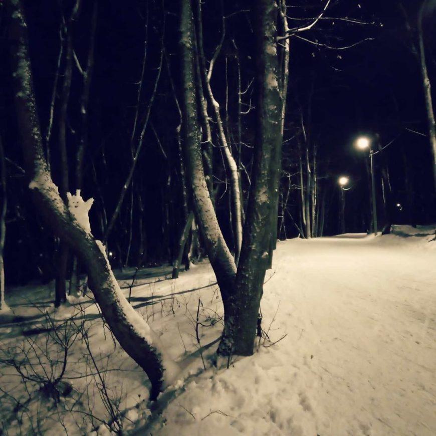 Привет лыжникам!