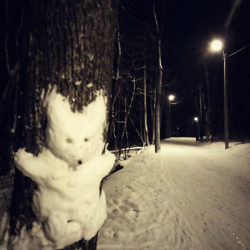 Снежный Лис. Кумысная поляна