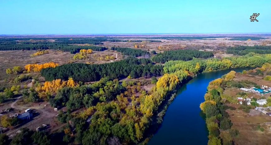 Окраина Дьяковского леса
