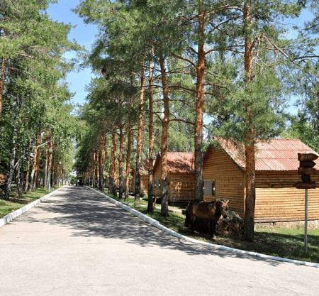 54 image 450x417 - Турбазы Саратова