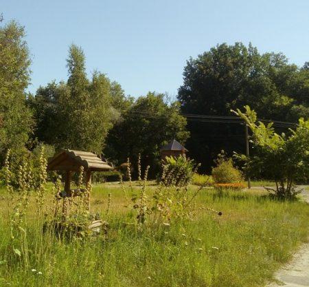 2 450x417 - Турбазы Саратова