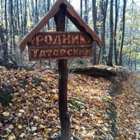 gegm2e9i0de 275x275 - Татарский родник