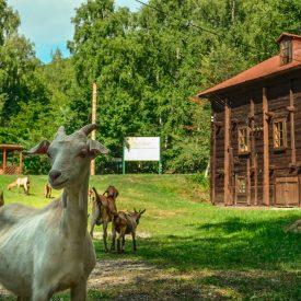 Водяная мельница села Лох