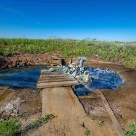 Сероводородный источник в селе Подстепное