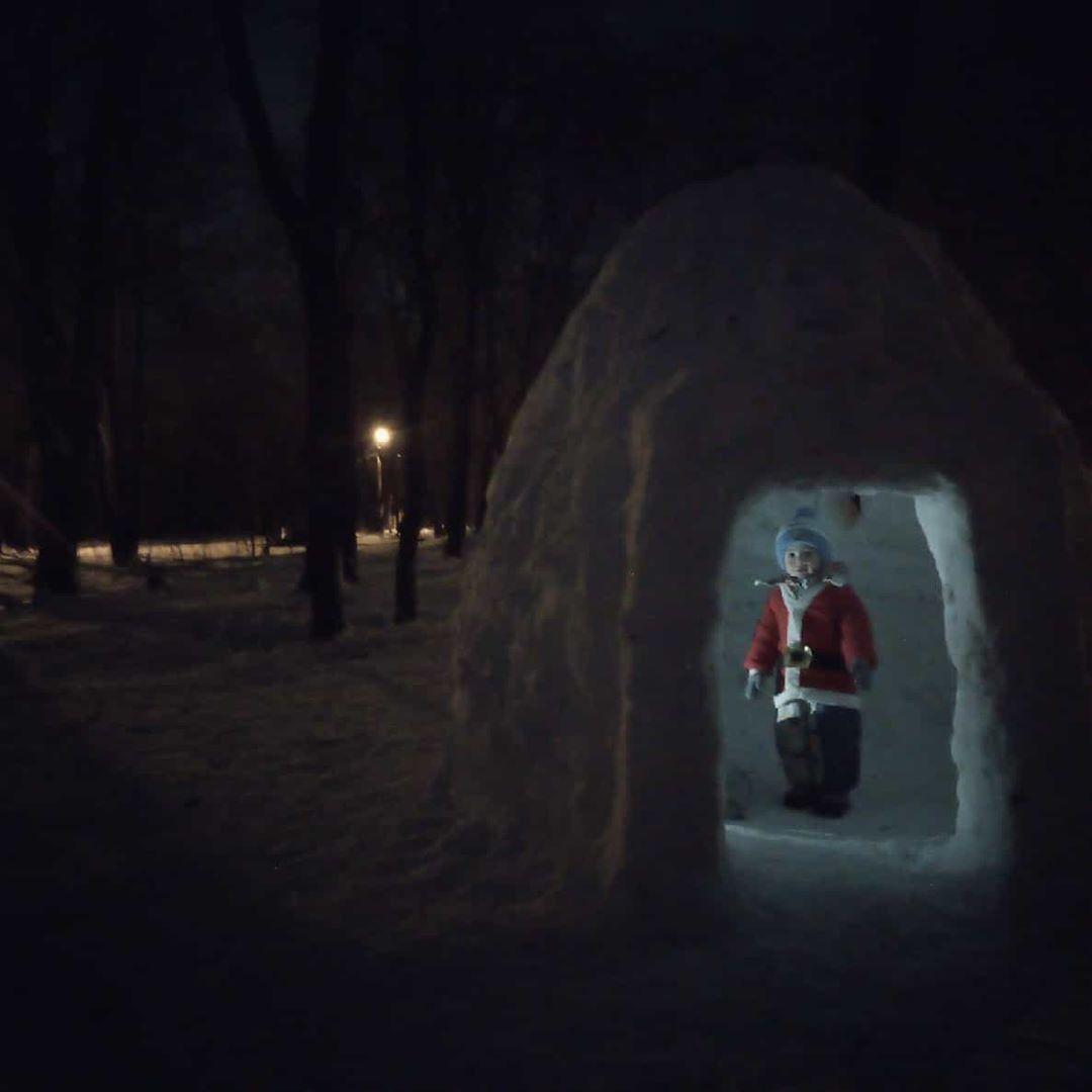 Лесные истории зимним вечером