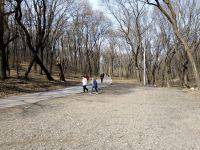 Коронавирус в Саратове – что делать, можно ли гулять на Кумысной поляне